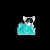 Шарм Кот в сумке